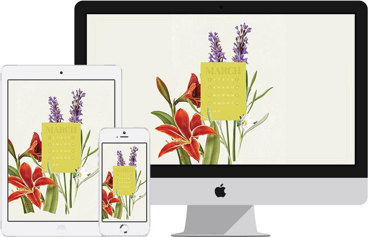 marhc desktop on iMac, iPad, and iPhone